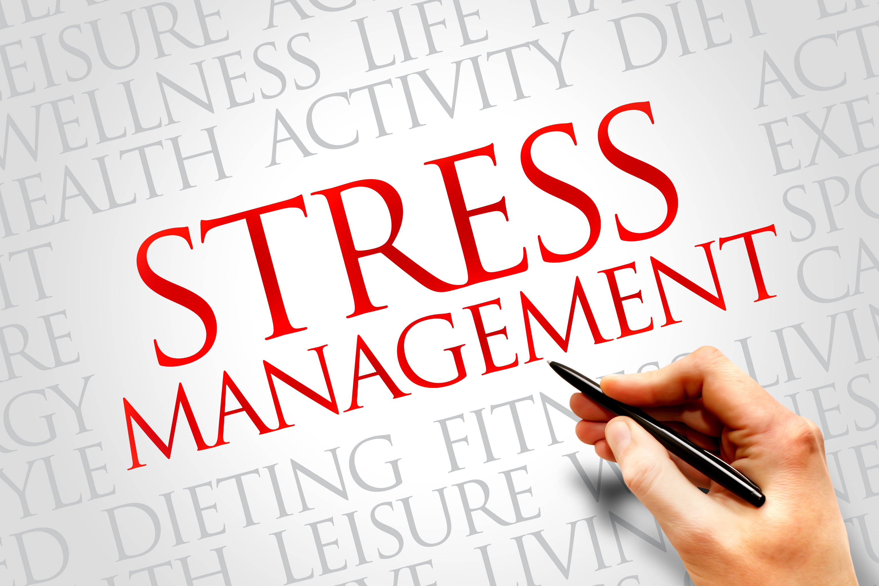Essays about service stress